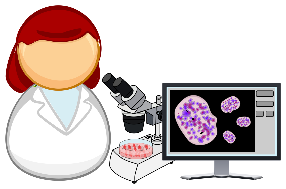 Cell clipart tissue cell. And culture biology free