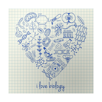 Biology drawing abstract. Drawings in heart shape