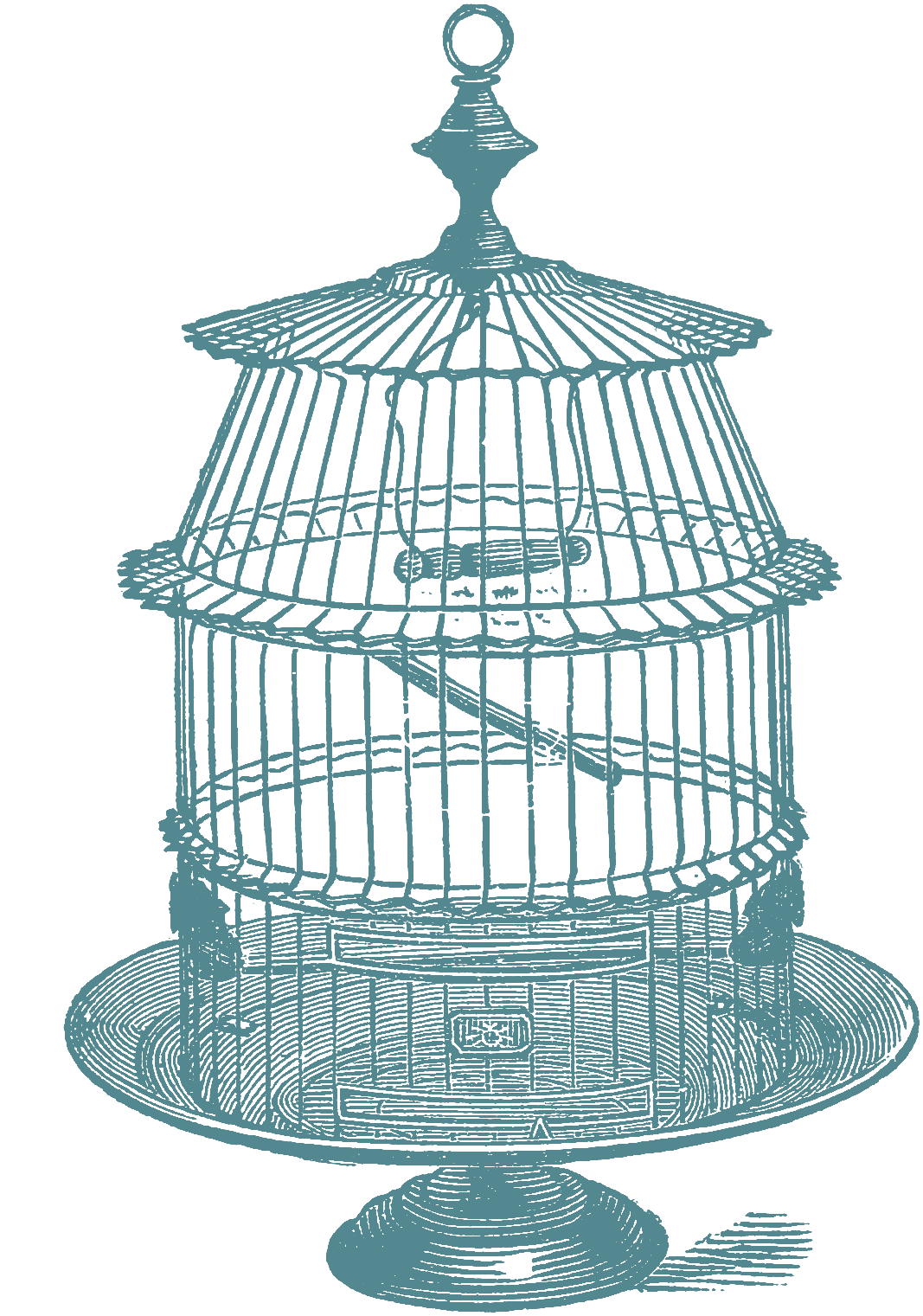 Bird cage clipart png. At getdrawings com free