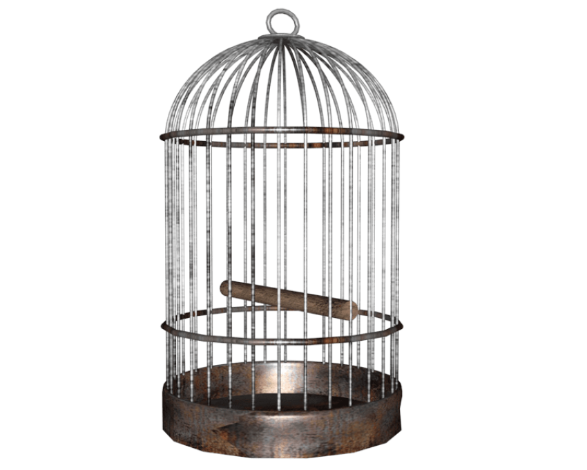 Bird cage png. Free images toppng transparent