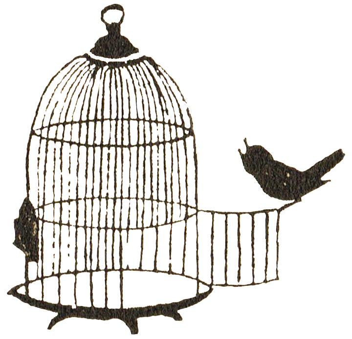 Bird cage png. Image silhouette copy animal