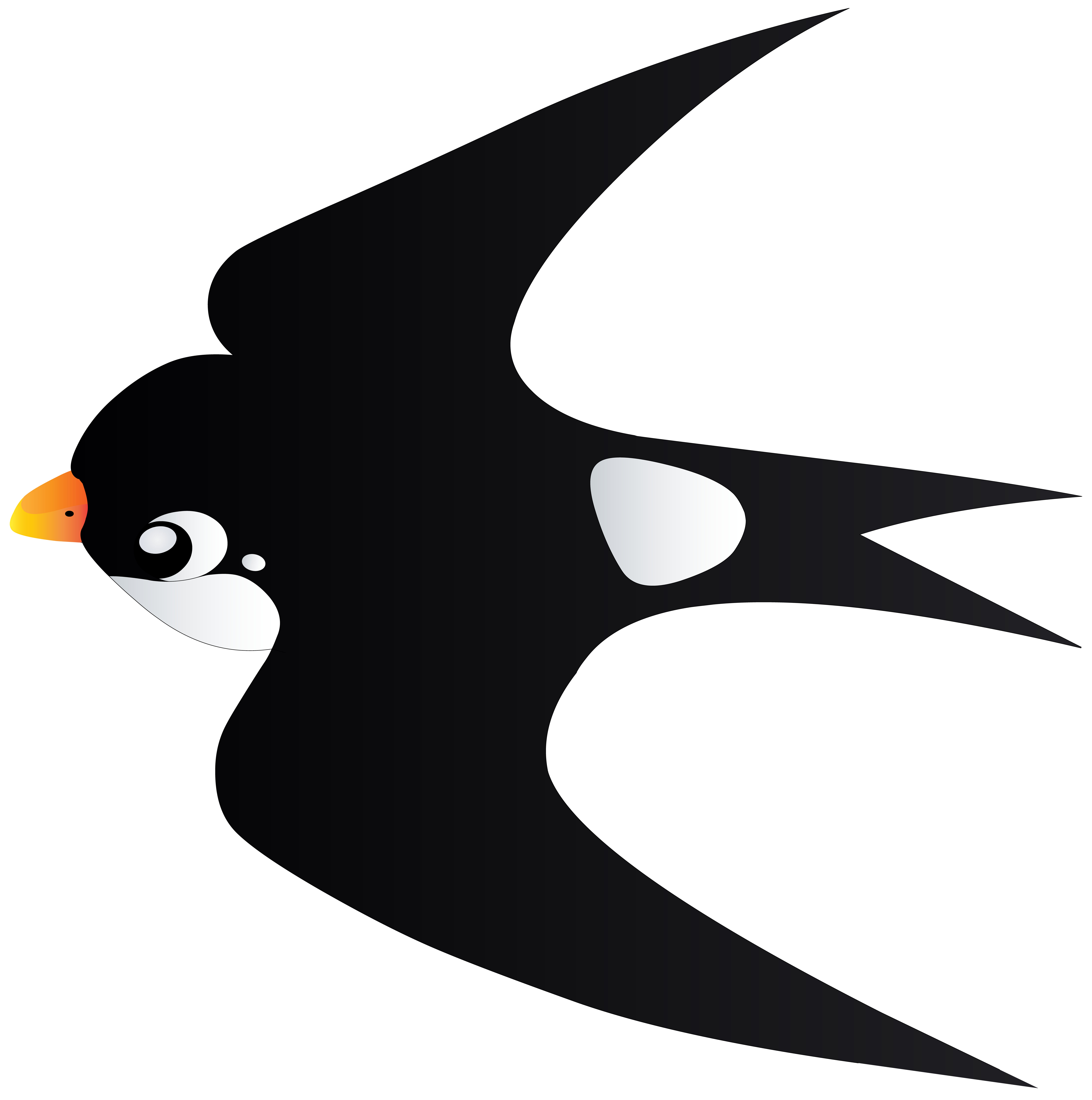 Bird cartoon png. Swallow transparent image gallery