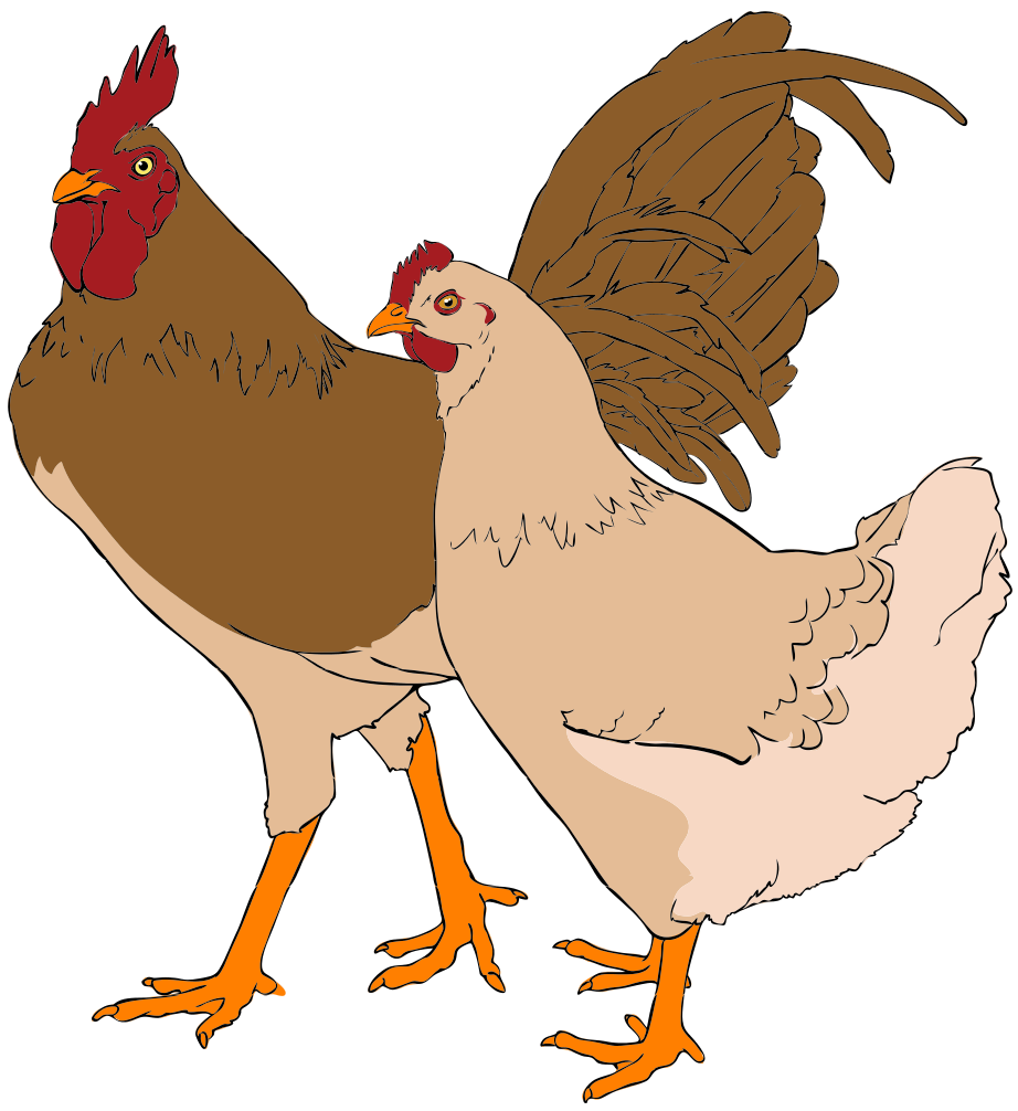 Bird clip art artsy. File rooster and hen