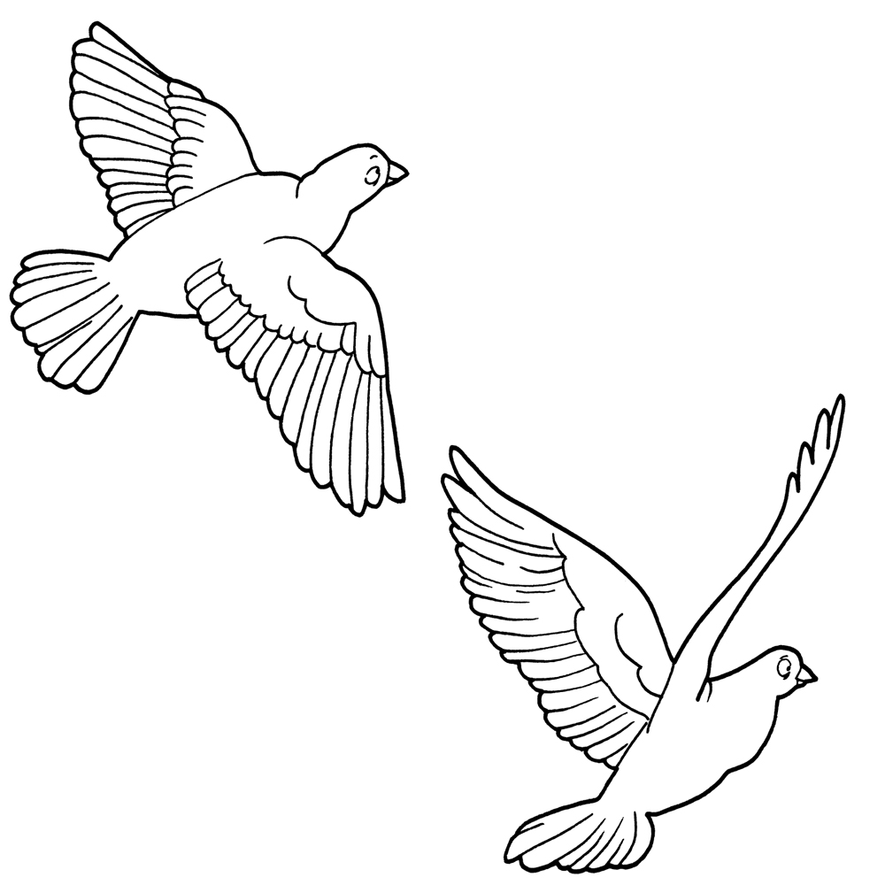 Bird clip art black and white. Clipart of in b