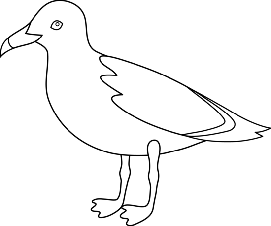 Free outline drawings of. Seagull clipart banner download