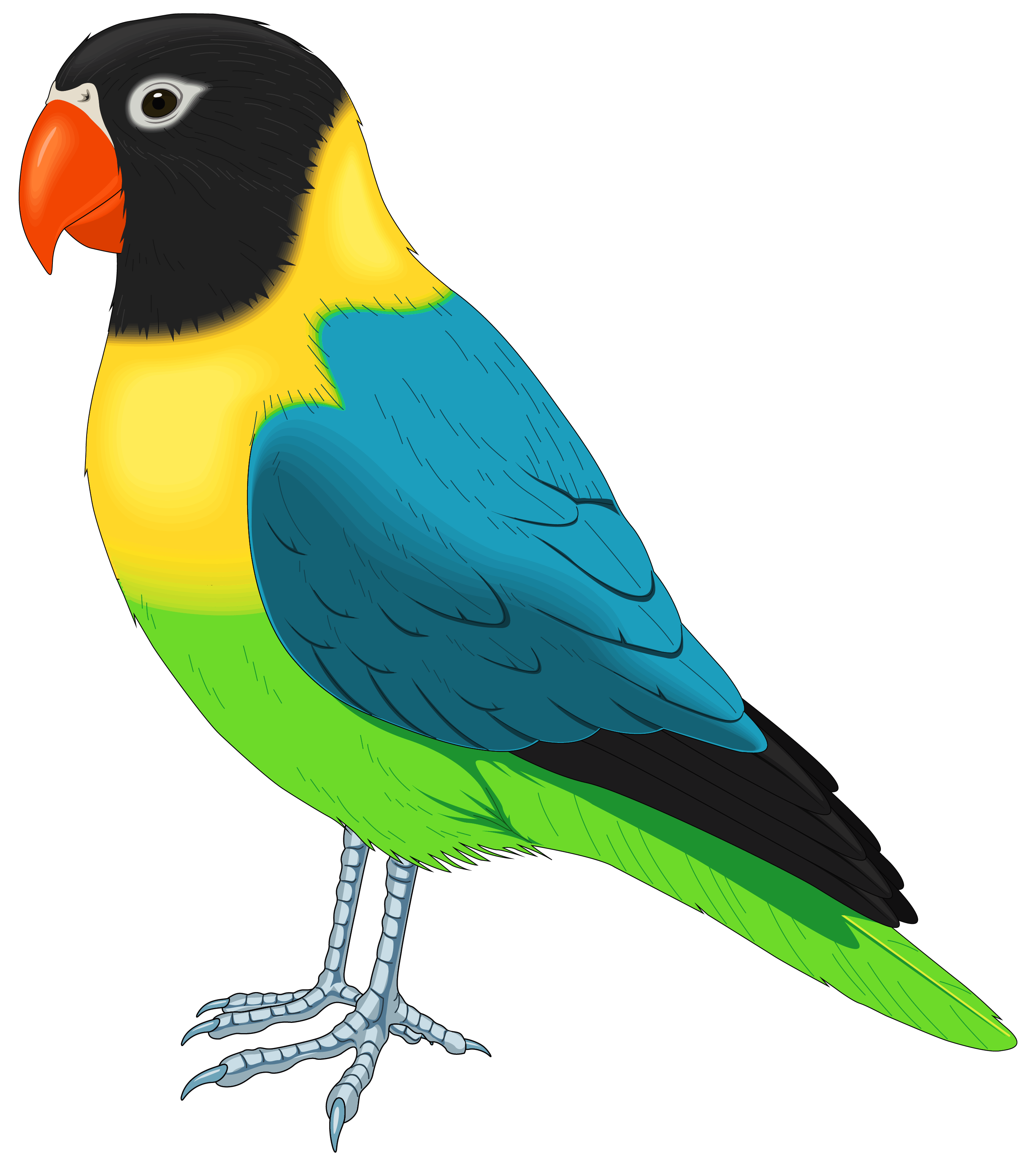 Bird clipart. Blue mail png typegoodies