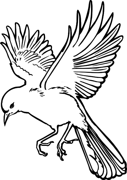 Bird clipart sketch. Free flying drawing download