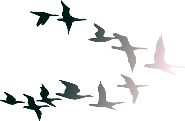 Bird clipart sky. Free birds flying picture