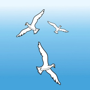 Bird clipart sky. Free seagulls image three