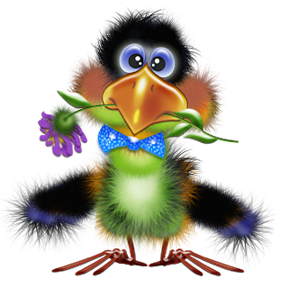 Toucan clipart cute. Cartoon images are free