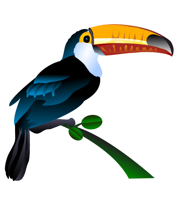 Bird clipart tucan. Free to use public