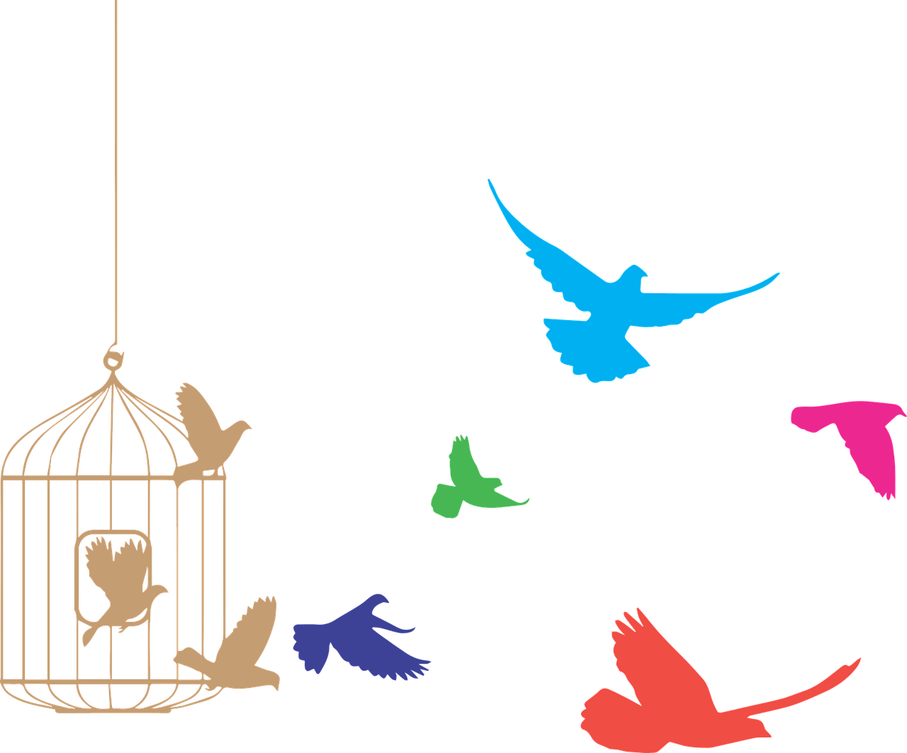 Bird fling out of cage png. Birds flying from clipart