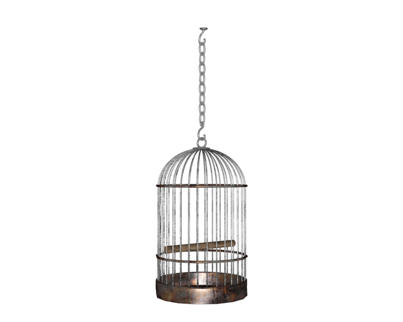 empty cage png