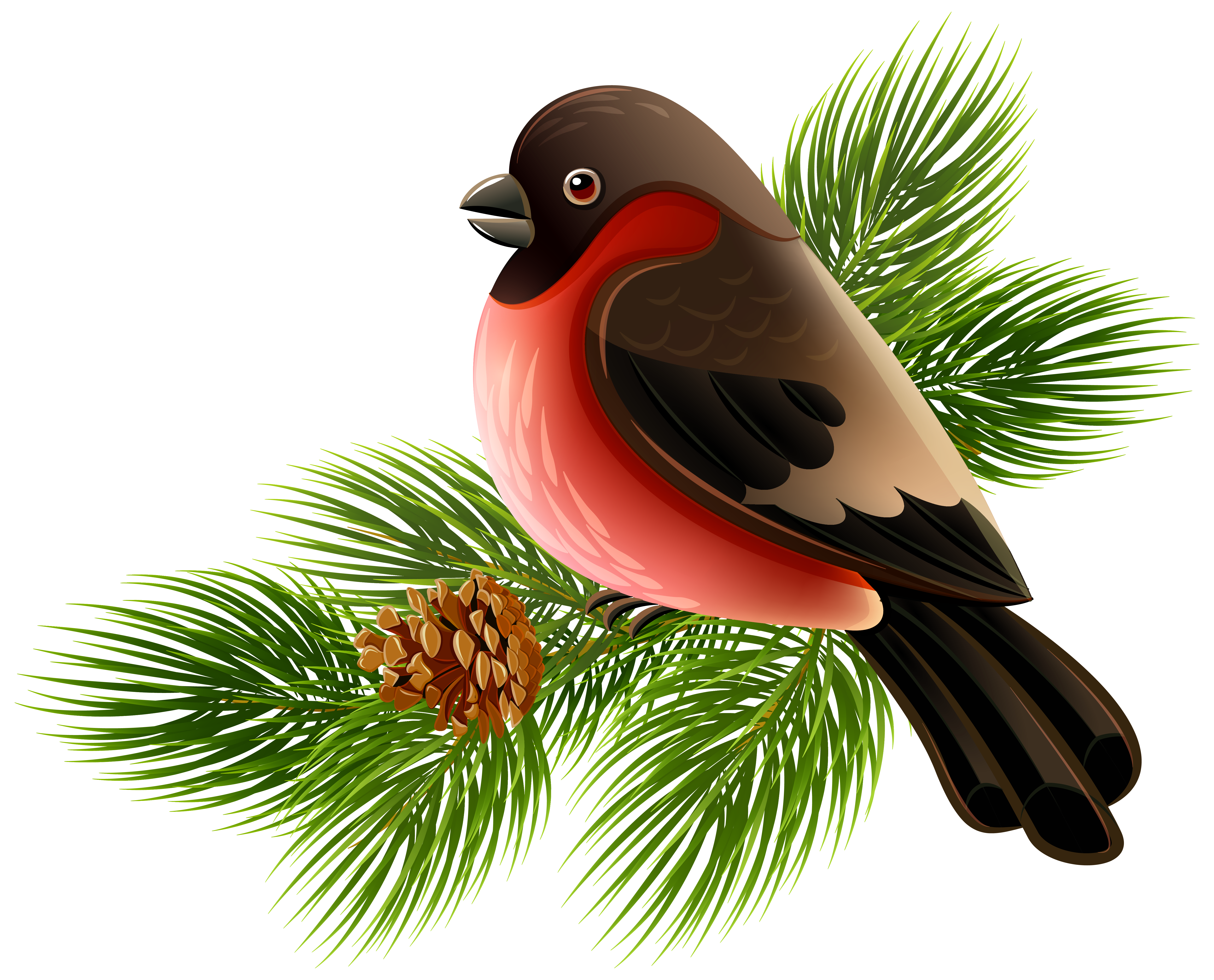 Bird on a branch png. And pine clipart image