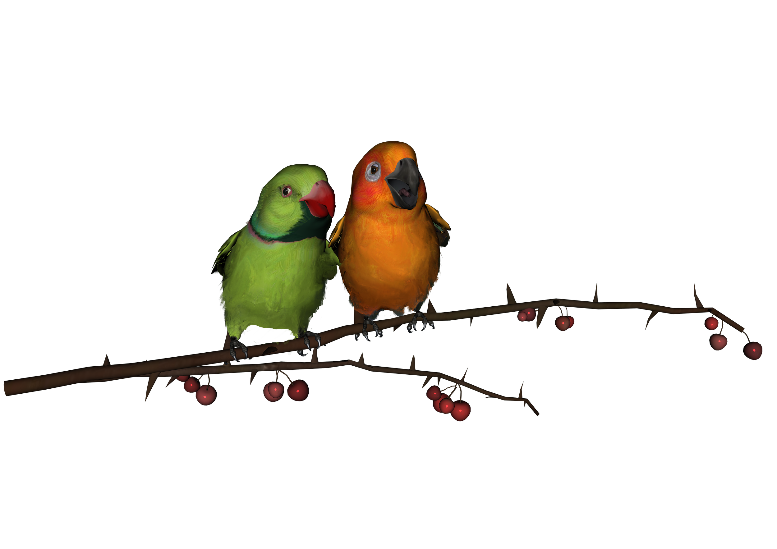 Love birds png. Download all