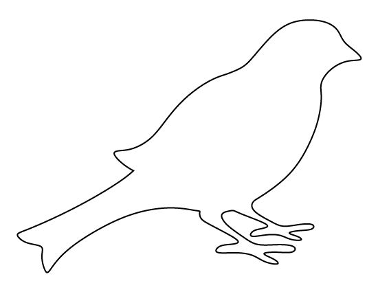 Bird outline. Pin by muse printables