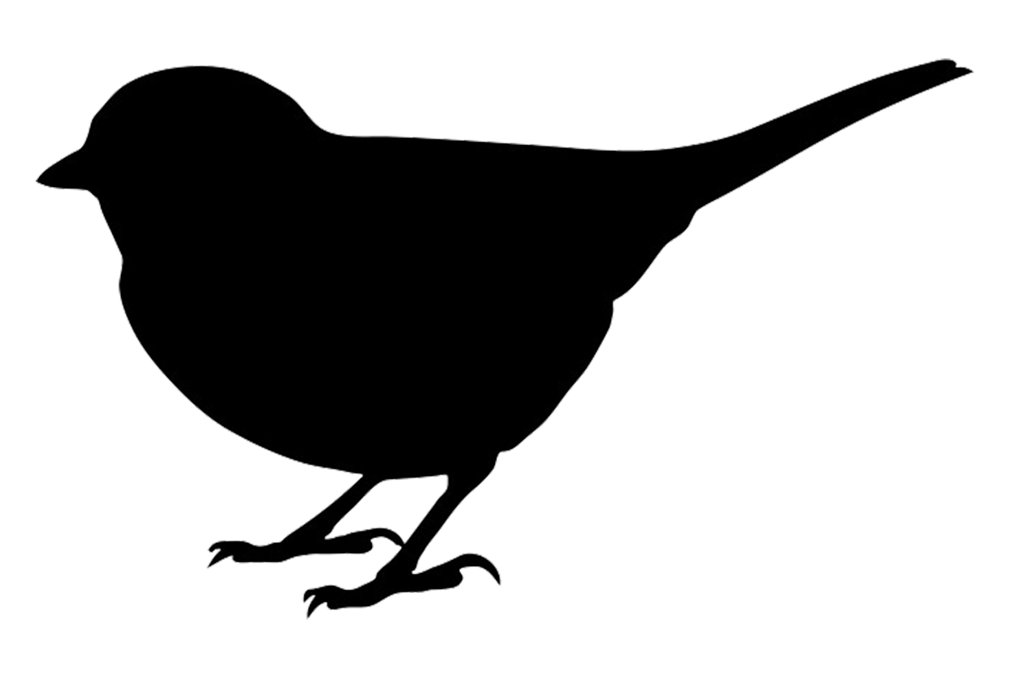 chickadee vector sparrow