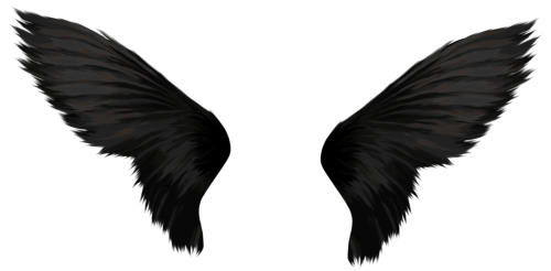 owl wings png