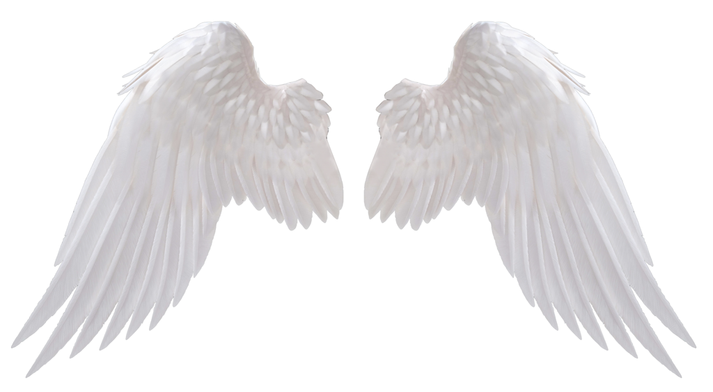 Png wings. White image peoplepng com