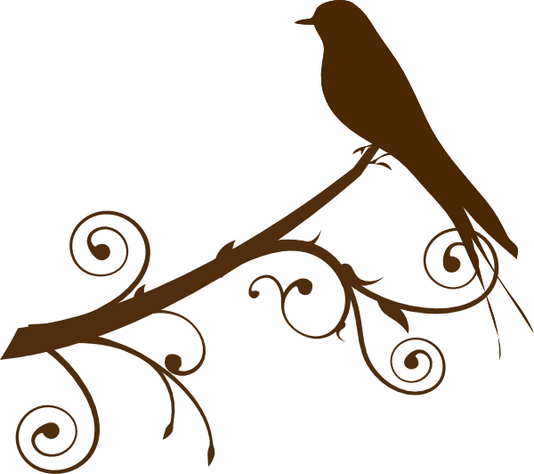 Bird on a branch png. Silhouette of birds at