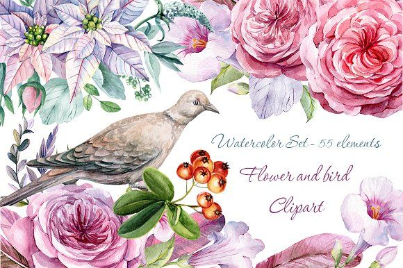 Birds clipart flower. And bird watercolor by