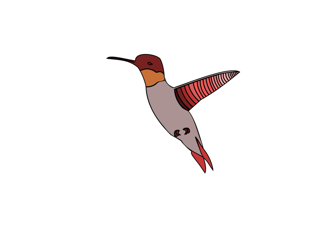 Birds clipart watercolor. Hummingbird painting computer icons