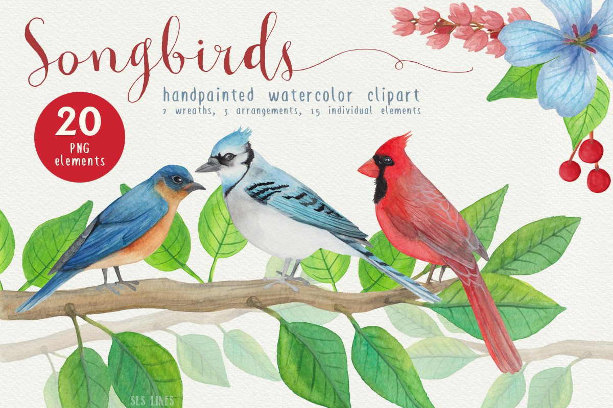 Birds clipart watercolor. Song by sal sc