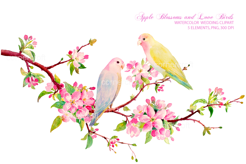 Birds clipart watercolor. Apple blossom love by