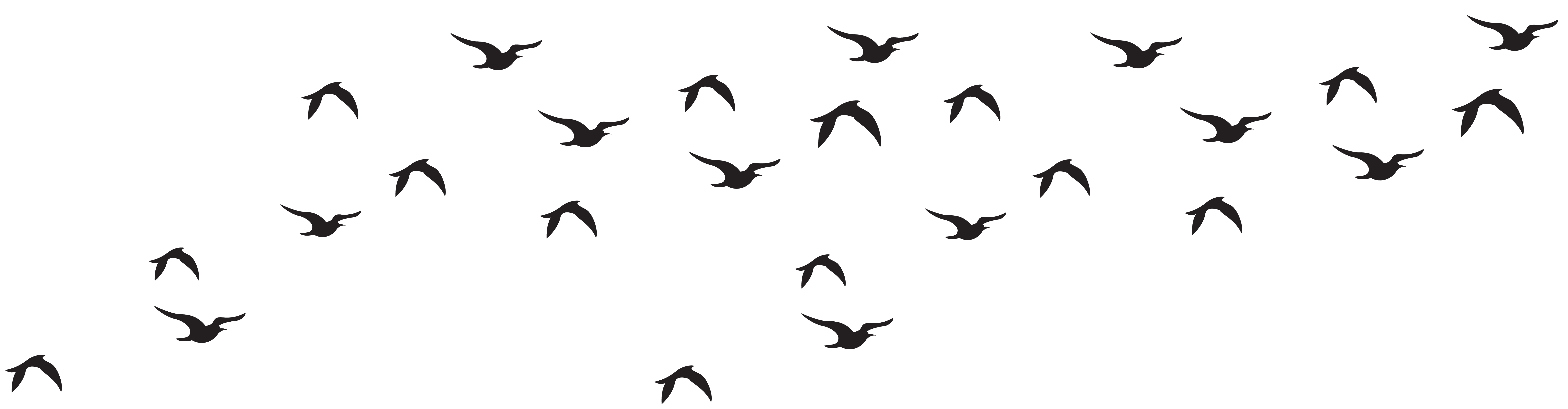 Flock of birds png. Silhouette clip art image