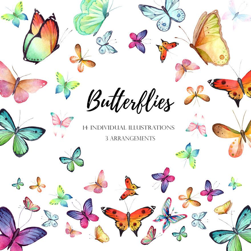 Birthday clipart nature. Watercolor butterfly digital hand