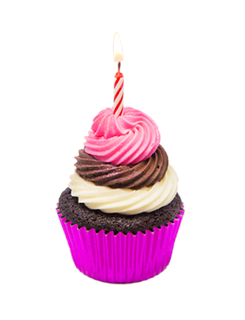 Birthday cupcake png. Project