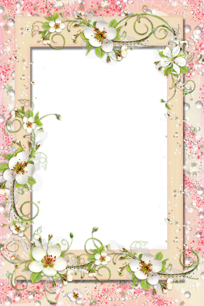 Birthday frames and borders png. Transparent frame with flowers