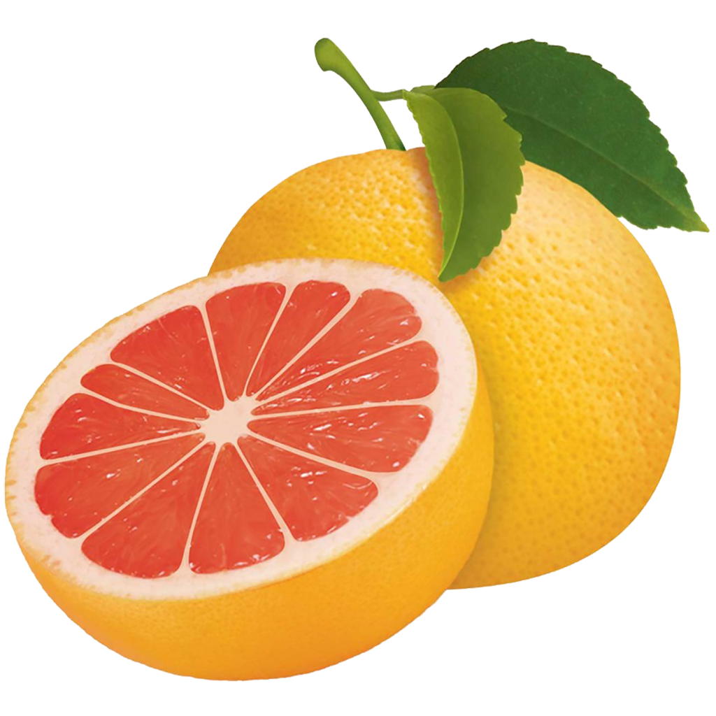 Bitter fruit. Lime clipart sour food