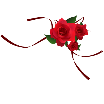 Red rose border png. Images vectors and psd