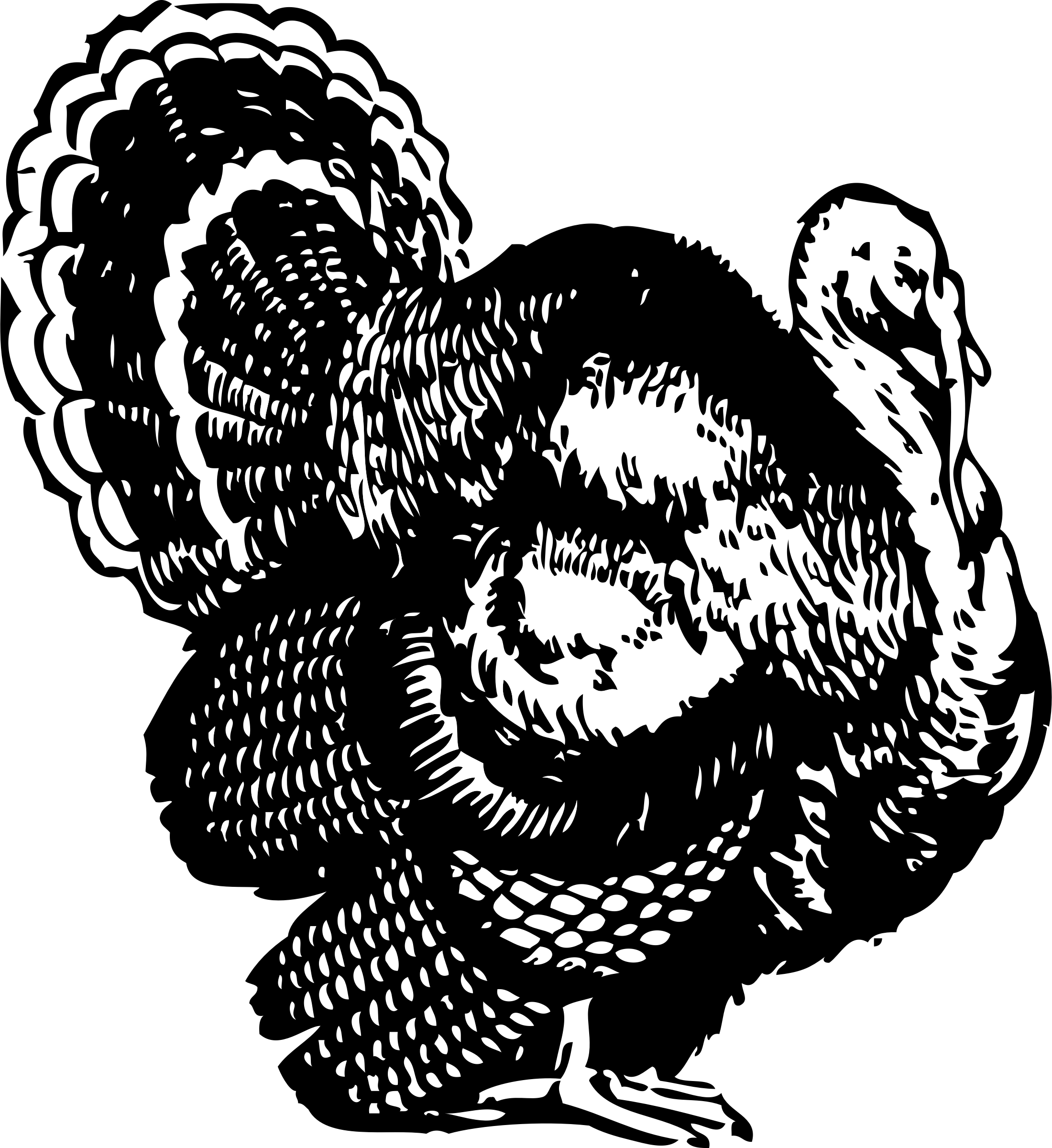 Black and white turkey png. Clipart big image