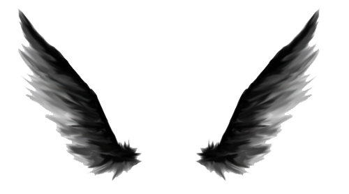 Black angel png. Wings images in collection