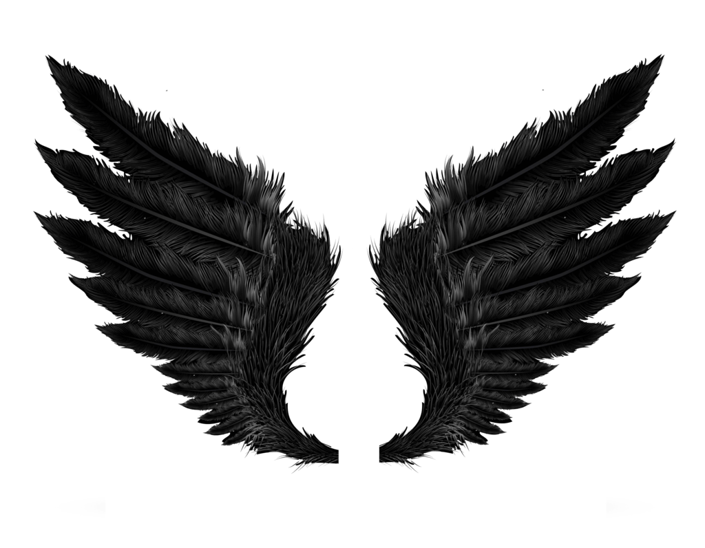 Black transparent stickpng. Angel wings png tumblr jpg stock