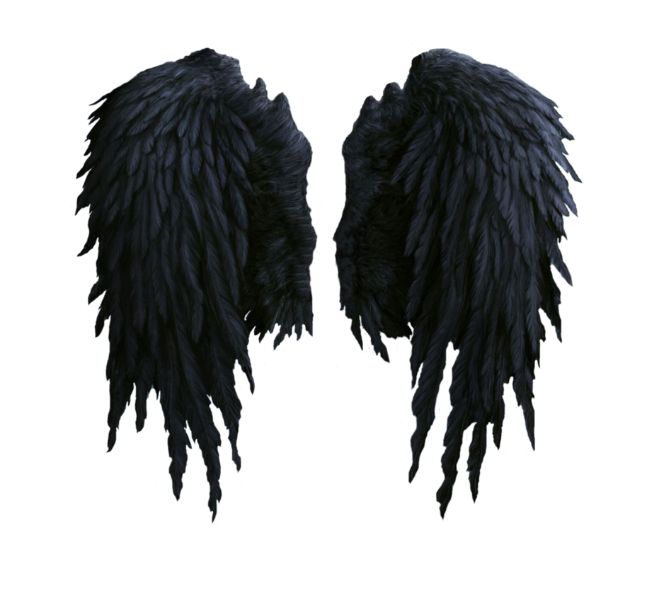 Black angel wings png. Stock by shadow of