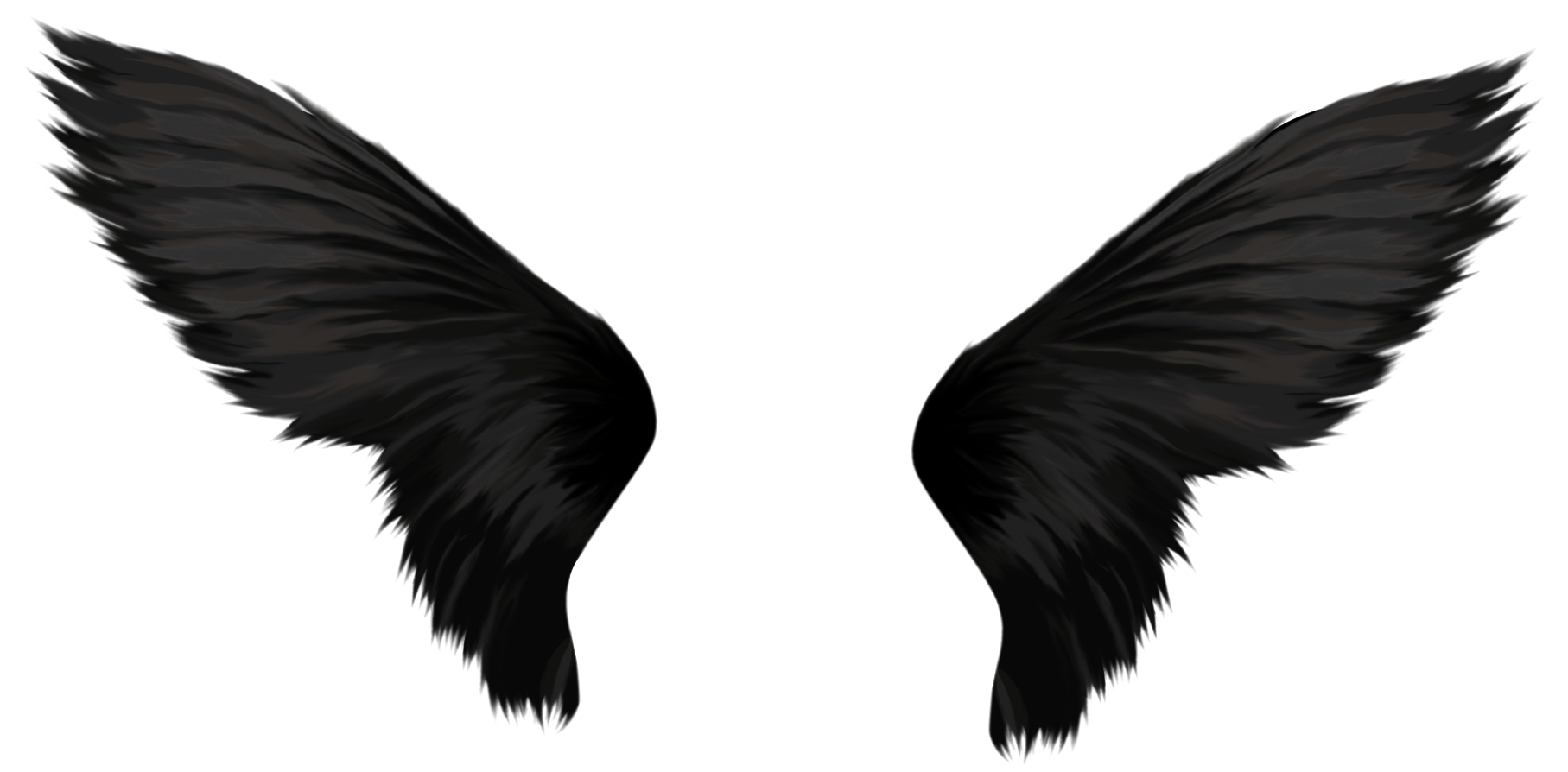 Black angel wings png. Images free download