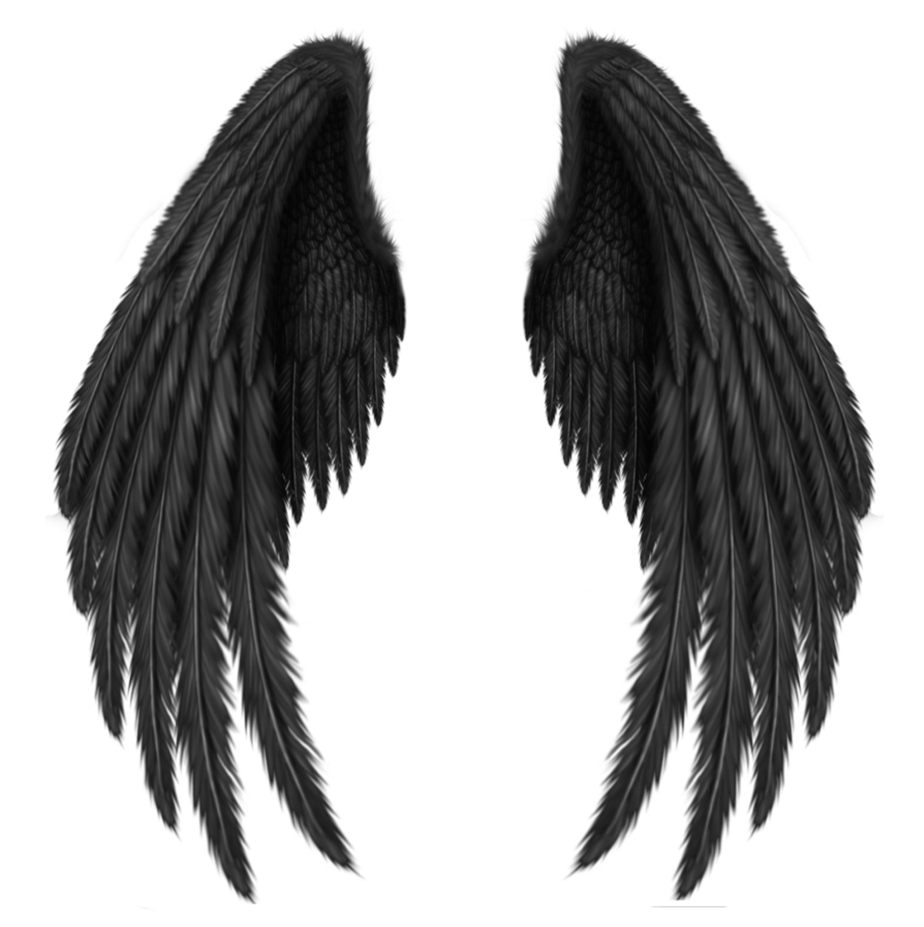 Black angel wings png. Transparent clipart picture artistically