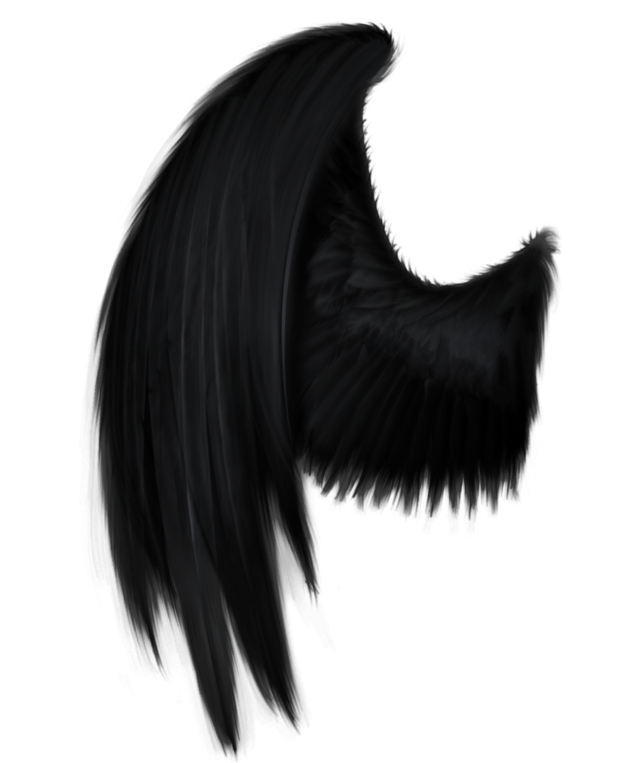 Black angel wings png. Wing by starscoldnight deviantart