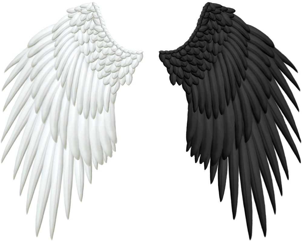 Black angel wings png. Good and evil by
