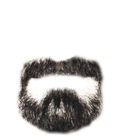 realistic mustache png