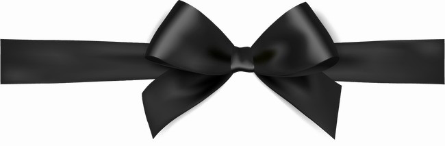 Black bow png. Ribbon image background peoplepng