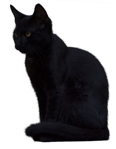 Black cat png. By ivaxxx on deviantart