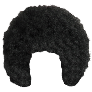 Black curly hair png. Afro transparent images all
