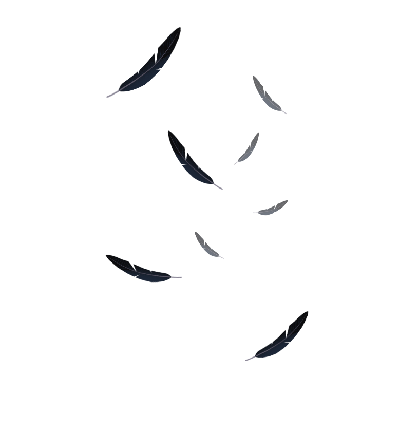 falling feathers png