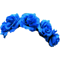 Flower crowns png. High quality transparent