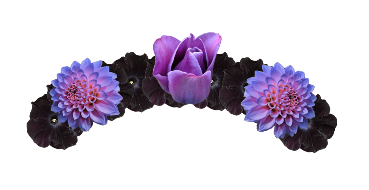flower crown png purple