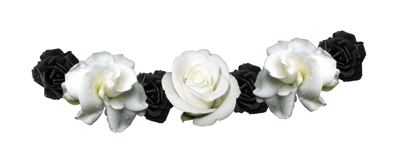 White flower crown png. And black transparent image